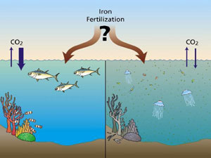 ironfertilization