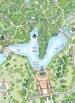 New Central Park Map Identifies, Plots 19,600 Trees – THE DIRT on