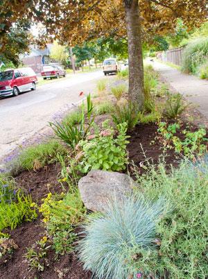 rambunctious garden saving nature in a post wild world