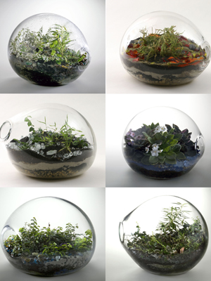Miniature Landscapes The Dirt
