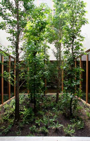 barnes_courtyard