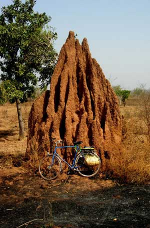 termitehill