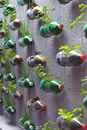 You Can Turn Those Leftover Soda Bottles Into A Vertical Garden With Some Supplies And Bit Of Crafting Skills This Is Do It Yourself DIY