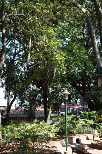 poblado-park