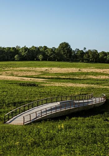 6. Meadow Bridge
