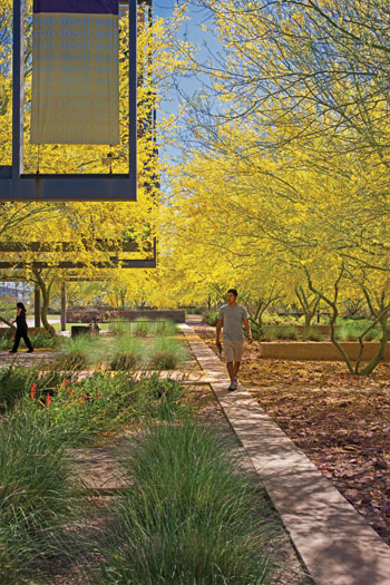 Nature is but another name for health the dirt for Ten eyck landscape architects