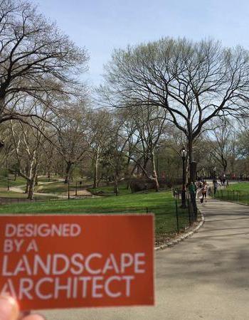 Central Park / Jennifer Nitzky