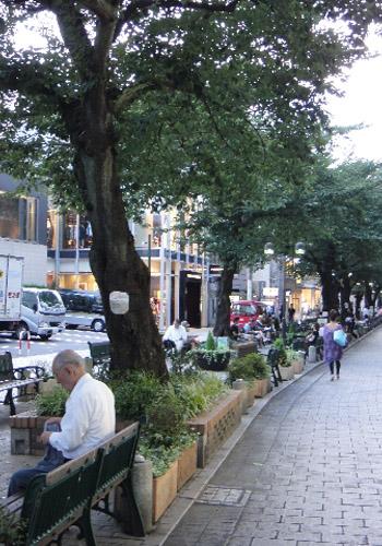 Street in Jiyugaoka,Tokyo