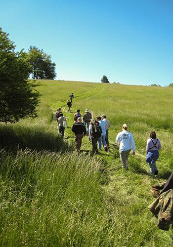 Oakencroft Farm / Nelson Byrd Wolz Landscape Architects