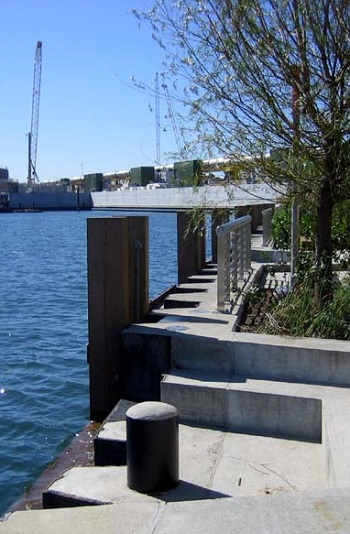 Newtown Creek Nature Walk / Gowanus Lounge