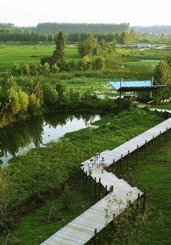 Weishan Wetland Park, Aecom Shanghai / ASLA