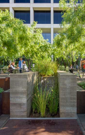 University of Texas at Austin Belo Center for New Media garden / Ten Eyck Landscape Architects, Inc.