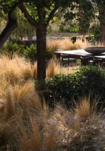 Beautiful drought landscape / Ten Eyck Landscape Architects, Inc.