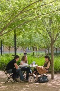 ASLA 2010 Professional Honor Awards. Rice University Brochstein Pavilion by Office of James Burnett / Paul Hester