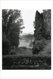 Perugino view, early morning / copyright Alan Ward