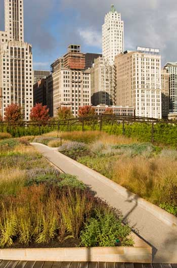 ASLA 2008 Professional General Design Honor Award. Lurie Garden, Chicago / Mark Tomaras