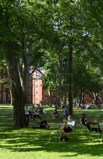 Harvard Yard / Harvard Magazine