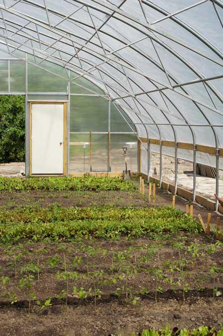 Penrose market garden / Jared Green