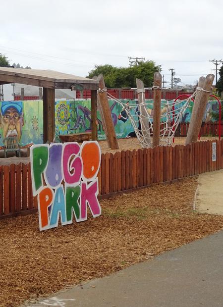 Pogo Park / Richie Unterberger