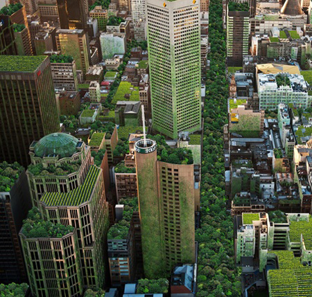 The City of Melbourne's Urban Forest Strategy. Image by Anton Malishev / ArchitectureAU