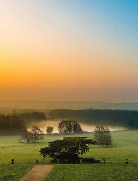 Dawn at Gatton Park (cropped) / copyright James Bruce