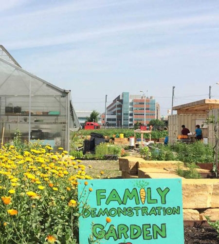 Keep Growing Detroit family demonstration garden / Keep Growing Detroit