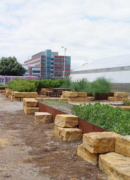 Plum street market garden / Jared Green