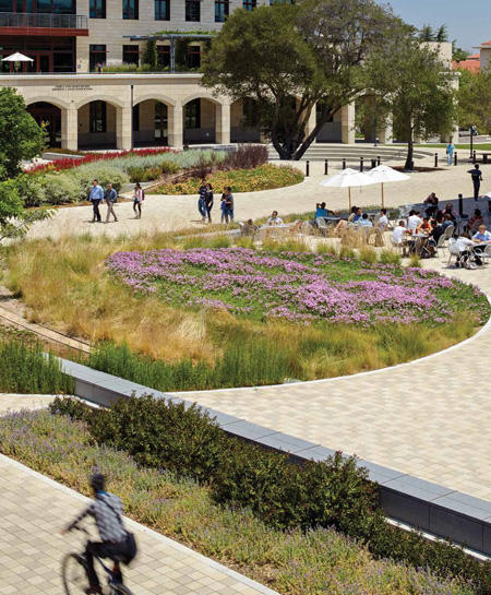 Stanford University campus, California /