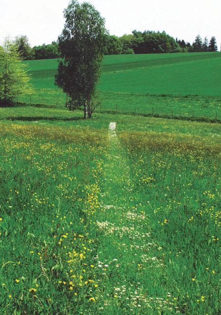 austere-gardens-1