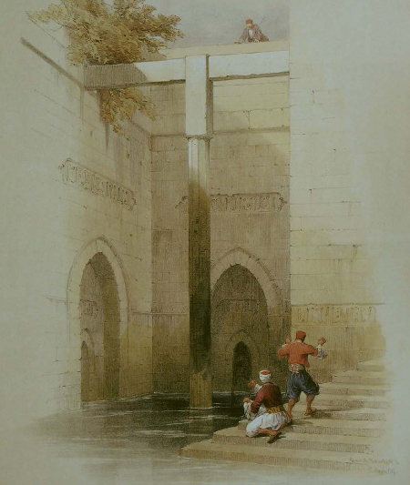 Egyptian Nilometer / David Roberts