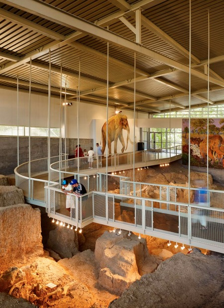 Interior of Mammoth Dig Shelter / Waco Parks and Recreation Department