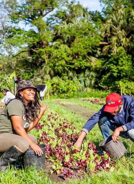 Farmers at Grow Dat Farm Claire Bangser
