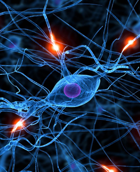 Deep learning neural net technologies / ExtremeTech