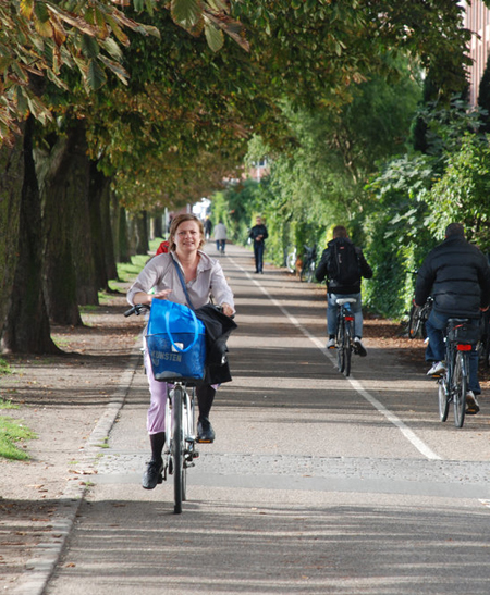 Copenhagen bike lane / NPR