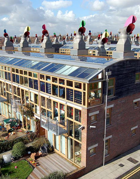 Lessons Learned from the First Generation of Net-Zero Communities