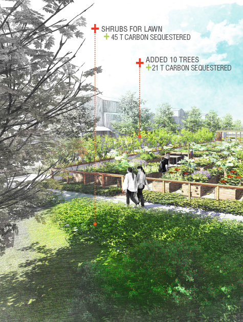 Landscape Architects: Now Is the Time for Climate Action – THE DIRT